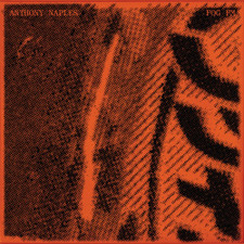 Anthony Naples - Fog FM - 2x LP Vinyl