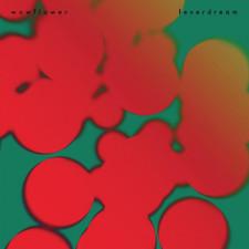 Wowflower - Fever Dream - LP Vinyl