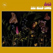 Ae3 (Alan Evans Trio) - The Wild Root - LP Vinyl