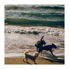Tuomo Vaananen - A Small Flood - 2x LP Vinyl