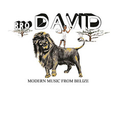 Bro David - Modern Music From Belize - LP Vinyl