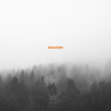 Desolate - Exceptionalism - 2x LP Vinyl
