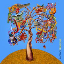 Spoonbill - Canopy - LP Vinyl