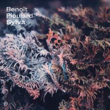 Benoit Pioulard - Sylva - LP Vinyl