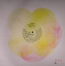 "UD - Adapting Ep - 12"" Vinyl"