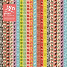The Leonard Simpson Duo - LSD - LP Vinyl