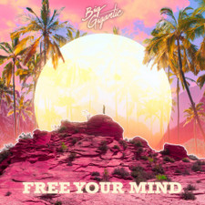 Big Gigantic - Free Your Mind - 2x LP Vinyl