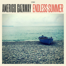 Amerigo Gazaway - Endless Summer (Poster Version) - LP Vinyl