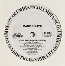 "Marvin Gaye - Sexual Healing - 12"" Vinyl"