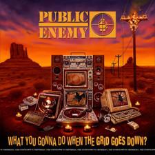 Public Enemy - What You Gonna Do When The Grid Goes Down? - LP Vinyl