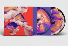 Bicep - Isles - 2x LP Picture Disc Vinyl