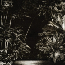 """Nicola Cruz - Arpejos Da Floresta - 12"""" Vinyl"""