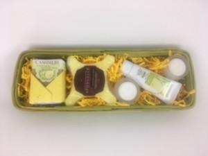 Tropical Breeze Spa Basket