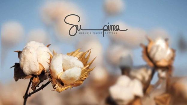 1888 Mills Bedding | Pure 100% Supima Cotton | Duvet Cover