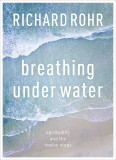 Breathing Under Water: Spirituality And The Twelve Steps cover photo