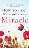 How to Pray When You Need a Miracle cover photo