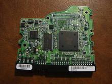 MAXTOR 4R080L0, RAMC1TU0, (N,F,C,A) 80GB PCB 190456887240