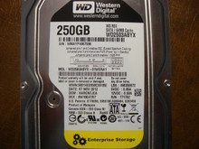 Western Digital WD2503ABYX-01WERA1 DCM:HARCNTJCA 250gb Sata