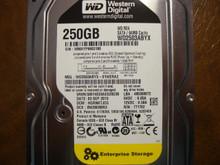 Western Digital WD2503ABYX-01WERA2 DCM:HGRNKTJCG 250gb Sata