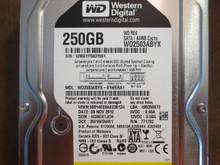 Western Digital WD2503ABYX-01WERA1 DCM:HGNCKTJCH 250gb Sata (Donor for Parts)