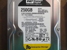 Western Digital WD2502ABYS-01B7A0 DCM:HBNNHT2AHN 250gb Sata (Donor for Parts)