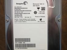 Seagate ST3250318AS 9SL131-022 FW:HP35 TK 250gb Sata