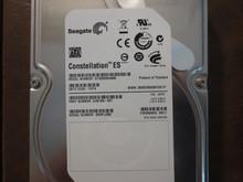 Seagate ST32000644NS 9JW168-501 FW:SN11 KRATSG 2.0TB Sata