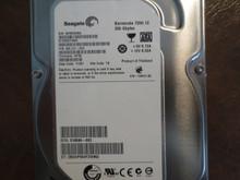 Seagate ST3250318AS 9SL131-023 FW:HP35 TK 250gb Sata