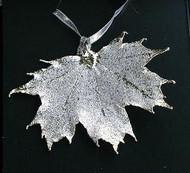Real Leaf Silver