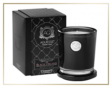 Aquiesse Black Currents - Orchid Collection | James Anthony Collection