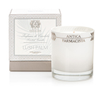 Antica Farmacista Lush Palm Scented Candle | James Anthony Collection