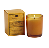 Hillhouse Naturals Autumn Harvested Votive Candle | James Anthony Collection
