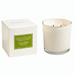 Hillhouse Naturals Cut Grass White 2 Wick Candle | James Anthony Collection