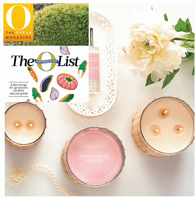 Oprah's O-List for 2017 Hillhouse Naturals | James Anthony Collection