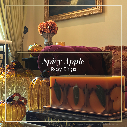 Rosy Rings Spicy Apple Botanical Brick Candle
