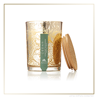 Thymes Forest Cedar Candle - Small | James Anthony Collection