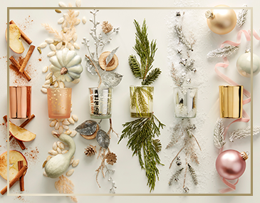 Thymes Frasier Fir Collection 2020 | James Anthony Collection