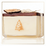 Thymes Frasier Fir Northwoods 2 Wick Candle | James Anthony Collection
