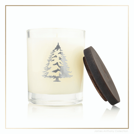 Thymes Frasier Fir Statement Collection Pine Needle Candle | James Anthony Collection