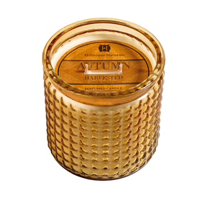 Hillhouse Naturals Autumn Harvested Large 2 Wick Candle | James Anthony Collection