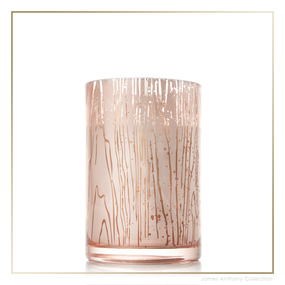 Thymes Forest Maple Candle - Medium   James Anthony Collection