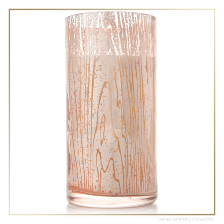 Thymes Forest Maple Candle - Large   James Anthony Collection