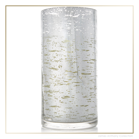 Thymes Forest Birch Candle Large   James Anthony Collection