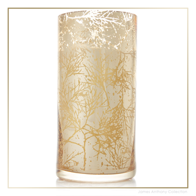 Thymes Forest Cedar Candle - Large | James Anthony Collection