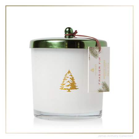 Thymes Frasier Fir Exclusive Poured Candle w/ Green Lid (tyms-637666049830) | James Anthony Collection