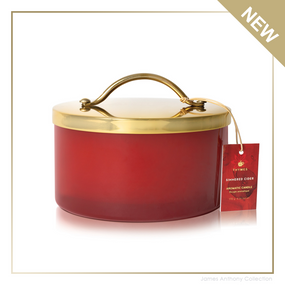 Thymes Simmered Cider Harvest Red Jar Poured Candle with Gold Lid - UPC 637666049632 | James Anthony Collection