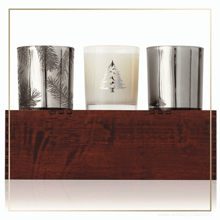 Thymes Frasier Fir Statement Candle Trio | James Anthony Collection