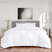 Regency Down Alternative Comforter - 846339088452