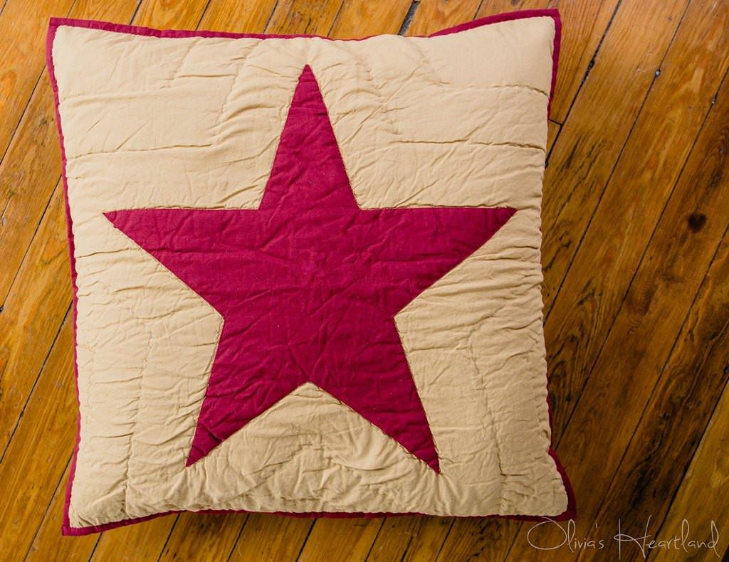 Burgundy and Tan Quilted Star Euro Sham - 844160082540