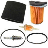 Golf Cart Deluxe Engine Maintenance Tune-Up Kit, Yamaha G14 4-Cycle Gas
